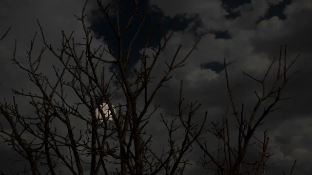 HD Super Moon Scape video