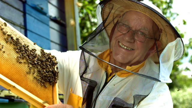 HD Super Slow-Mo: Beekeeper With A Honeycomb video