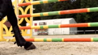 HD Super Slow-Mo: Horse Kicking Sand While Jumping video