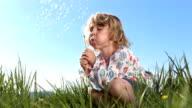 HD Super Slow-Mo: Little Girl Blowing Dandelion video