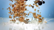 HD Super Slow-Mo: Muesli With Fresh Blueberries video