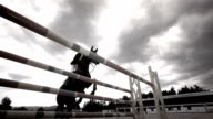 HD Super Slow-Mo: Professional Show Jumping video