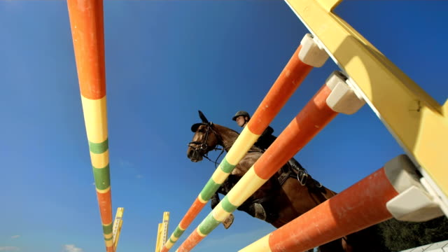 HD Super Slow-Mo: Show Hunter Jumping Over Oxer video