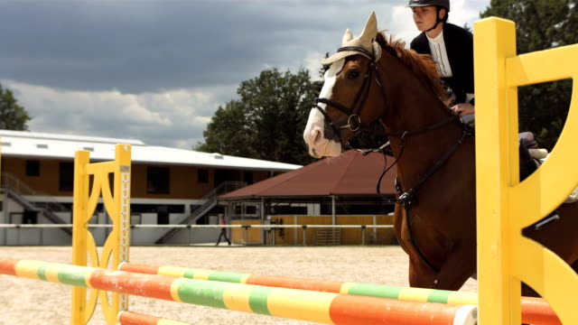 HD Super Slow-Mo: Show Hunter Jumps Over Oxer video