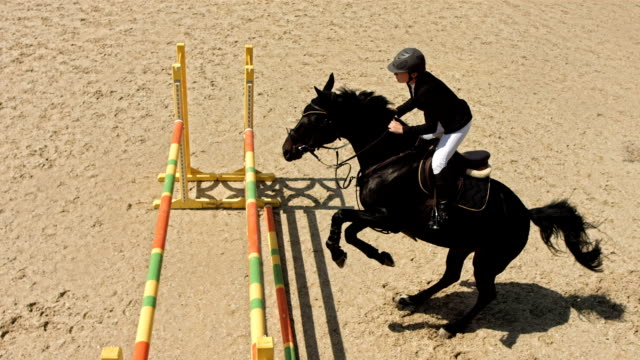 HD Super Slow-Mo: Show Jumping Competition video