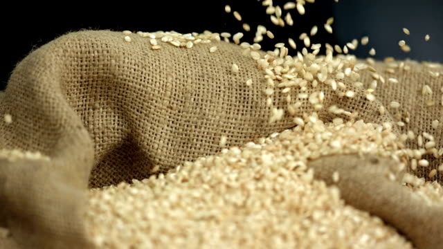 HD Super Slow-Mo: Wheat Grains Falling On Sack video