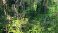 Surface of a lake video