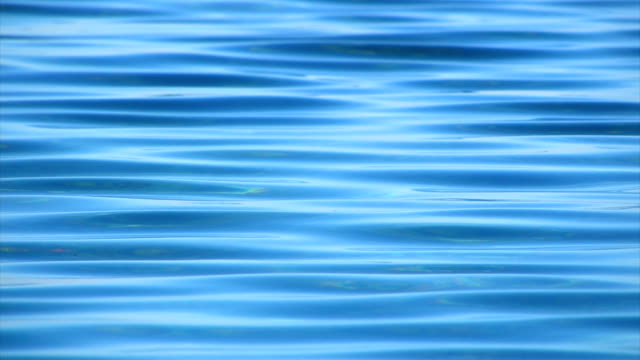 Surface sea water. video
