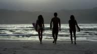 Surfer friends walking on the beach in Hawaii video