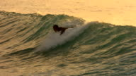 Surfer paddles into wave in late afternoon light, slow motion video