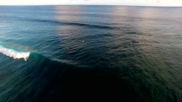 Surfer riding a wave, Green Bowl, Bali, Indonesia video