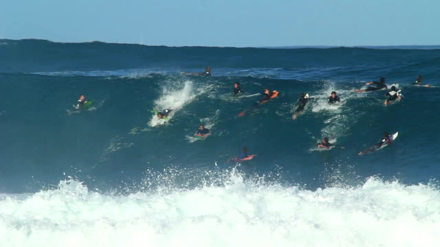 Surfer Wipeout on Big Wave video