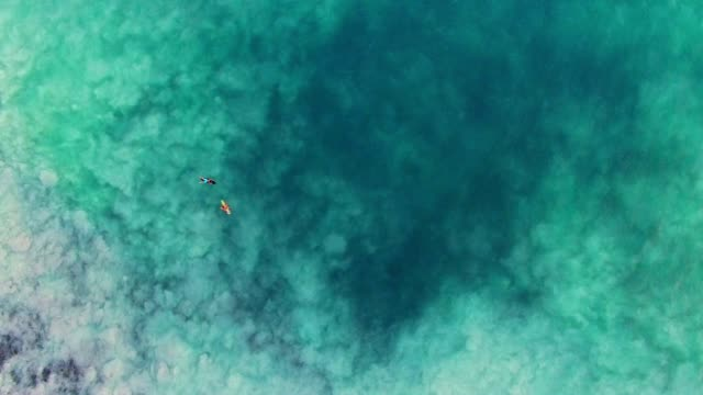Surfers, Aerial View video