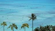 Surfers at Beach Resort Paradise video