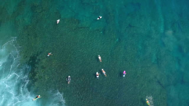 AERIAL TOP DOWN Surfers on summer vacation in Bali paddling towards line-up video