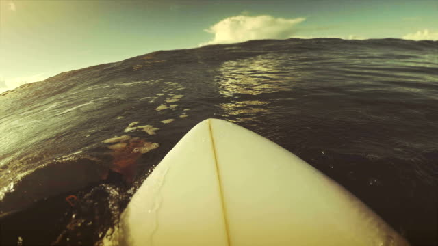 Surfing pov with action camera: on the surfboard video