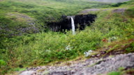 Svartifoss waterfall on Iceland video