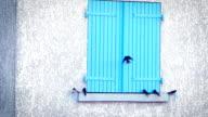 swallows on a windowsill video