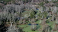 swamp and duck weed - Aerial View - South Carolina,  Charleston County,  United States video