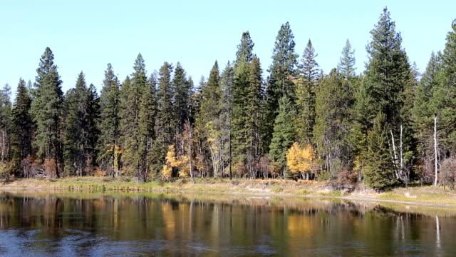 Swan River Montana Mountain River video