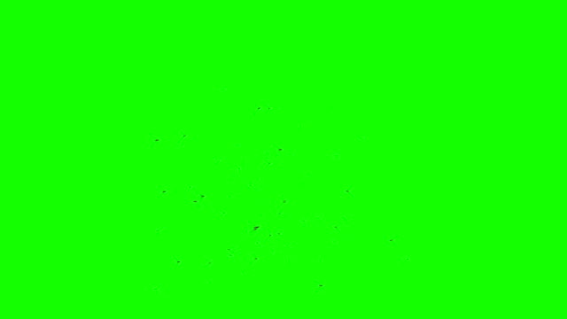 Swarm of Mosquitoes / Flies / Bees / Insects on a Green Screen Background video
