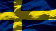 Sweden Flag video
