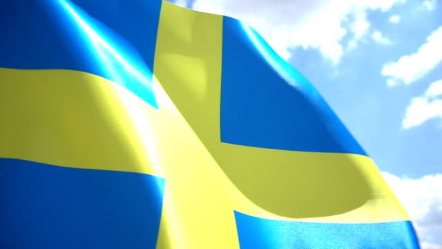 Swedish Flag High Detail video