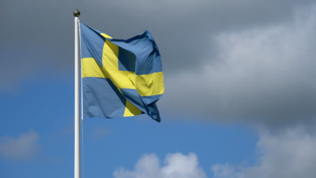 Swedish Flag in the Wind video