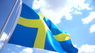 Swedish Flag video