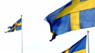 Swedish National flag waves against sky video