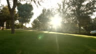 Sweeping Shot of Large Yard as the Sun Shines Between the Trees video