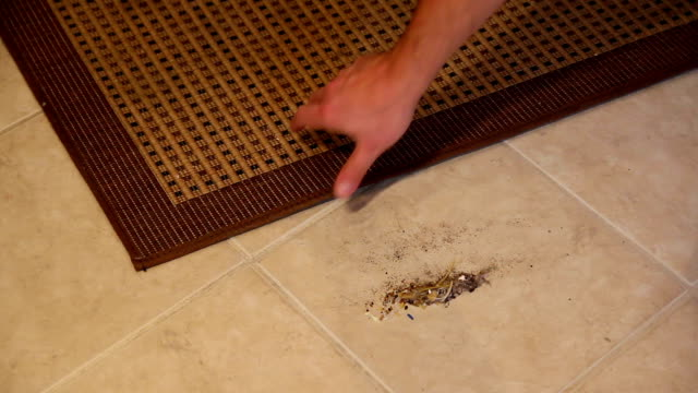 Sweeping Under Rug video