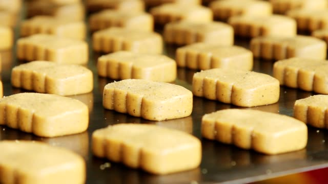Sweet cookies on manufacturing line. Bakery on production line at food factor video