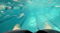 BREASTSTROKE: A swimmer legs in a swimming pool video