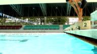 Swimmer prepare on his mark video