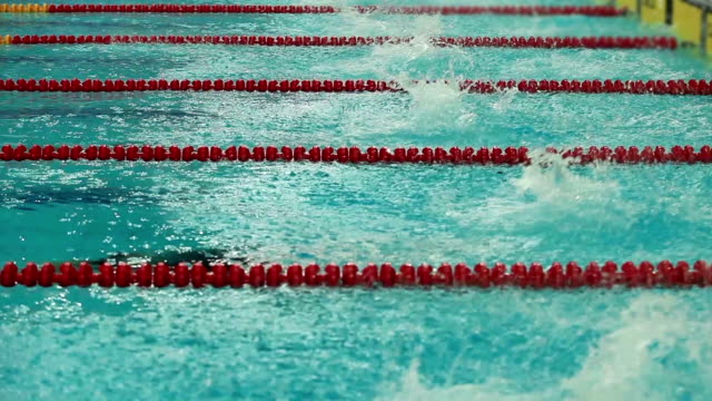 Swimming competition start and finish video