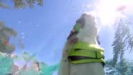 Swimming Dog video