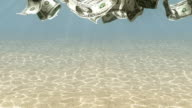 Swimming Dollars HD video