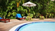 Swimming pool in tropical garden video
