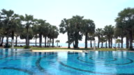 Swimming pool with tropical palm tree and beach video
