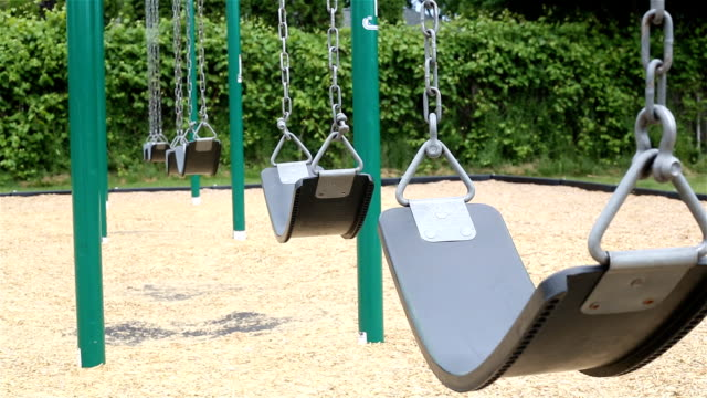 Swings Bush Background Medium video
