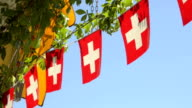 Swiss flag flapping video