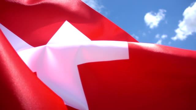 Swiss Flag High Detail video
