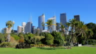 Sydney City Skyline, Royal Botanic Garden video