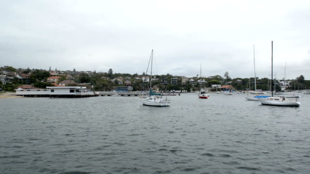 Sydney Harbour View from a Boat on the Water video