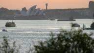 Sydney on Sunset video
