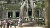 Ta Phrom temple, Angkor wat video
