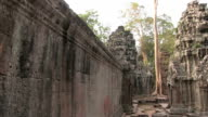Ta Prohm Temple, Angkor, Giant Trees and Roots, Cambodia video
