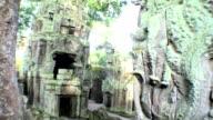 Ta Prohm Temple video