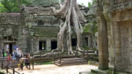 Ta Prohm Temple video